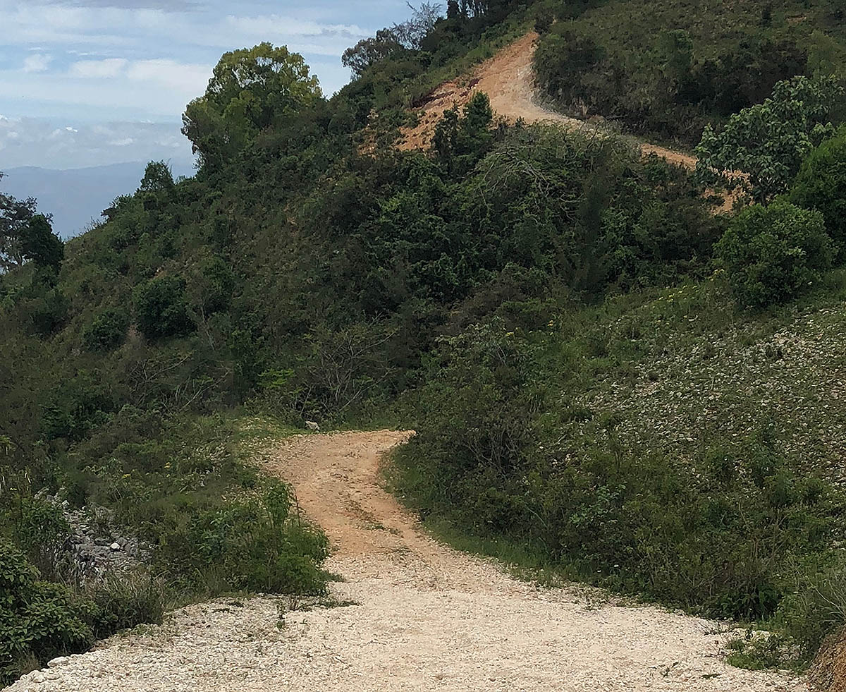 The Holden Haiti Half is a Trail Run